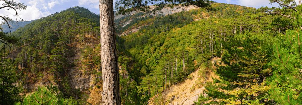 Ущелье трёх гор Уч-Кош в Крыму